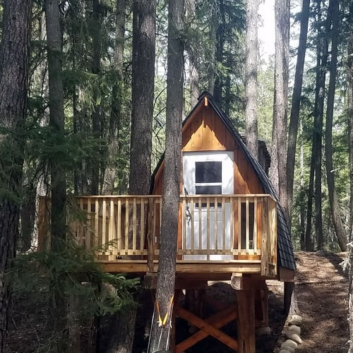 front of tree hut
