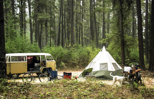 rv or camp site