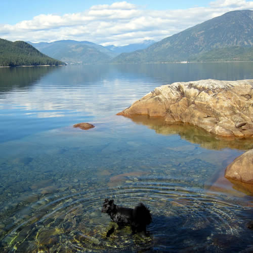 sofie in slocan lake